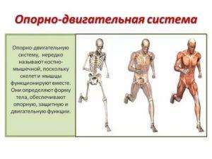 Лечение мышечной боли