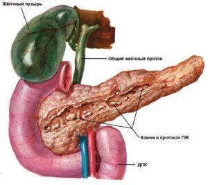 Панкреатит симптомы лечение народными средствами